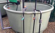 AP-2500-Poly-Aquaculture-Tank