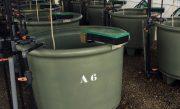 AP1000-2-Aquaculture-Tank